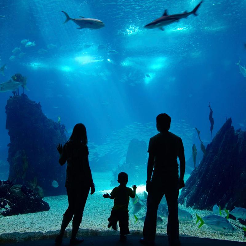 People standing in front of Aquarium